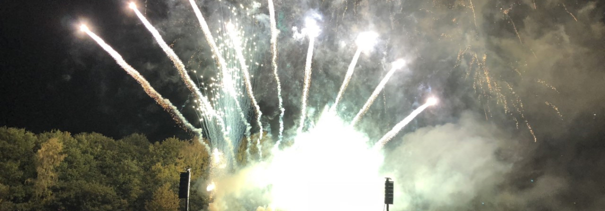 Image of the firewaorks at Bushey Fireworks